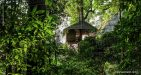 Laos-Tree-house-5