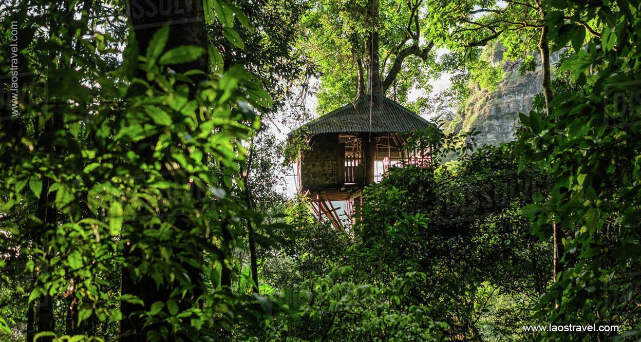 Laos-Tree-house-5