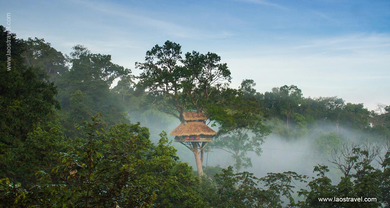 Laos-Tree-house-7