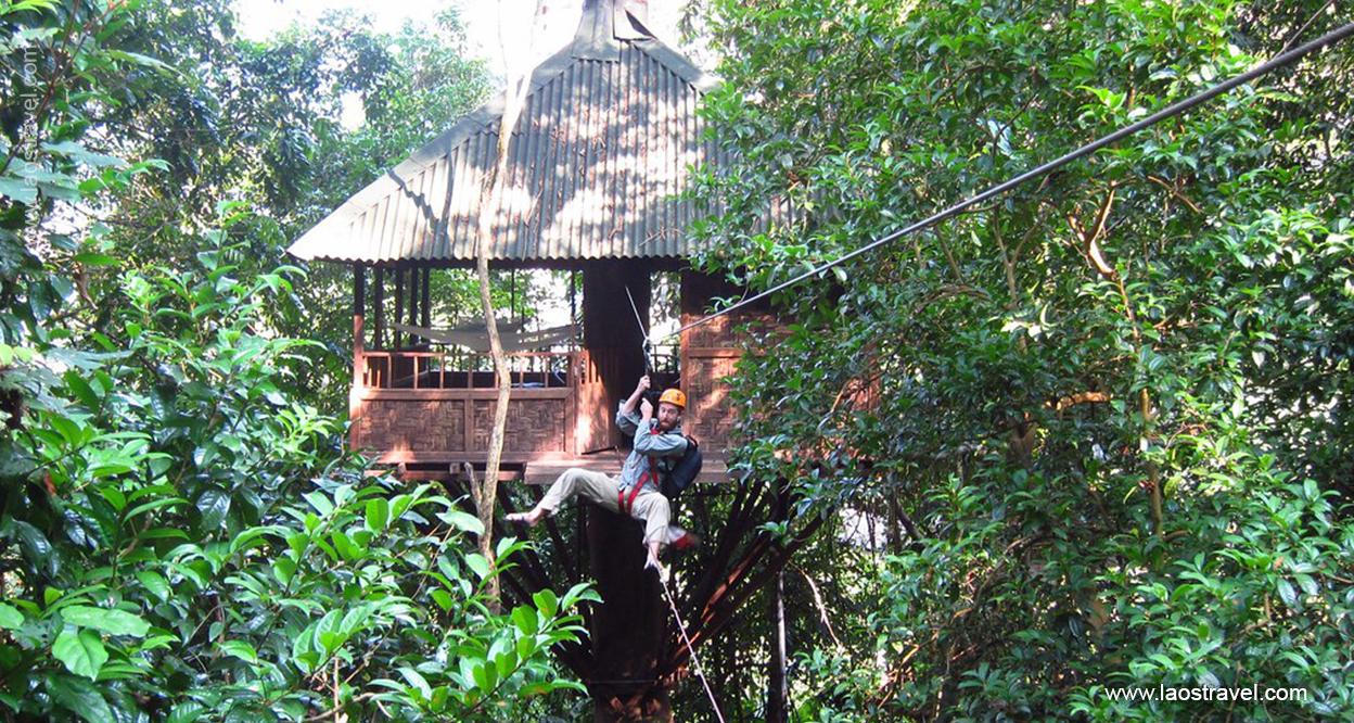 Laos-Tree-house-8