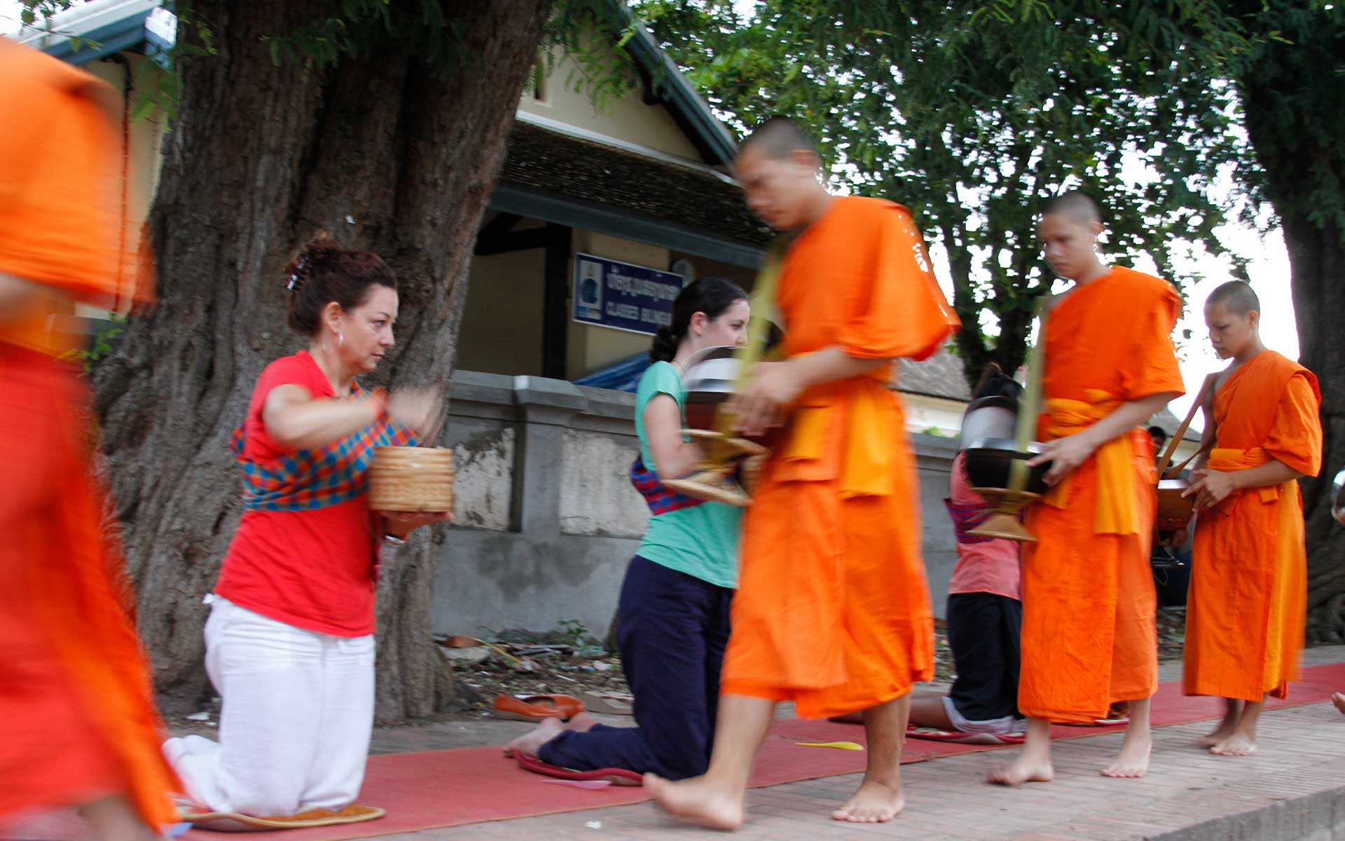 Alms giving ceremony 6 Laos Travel
