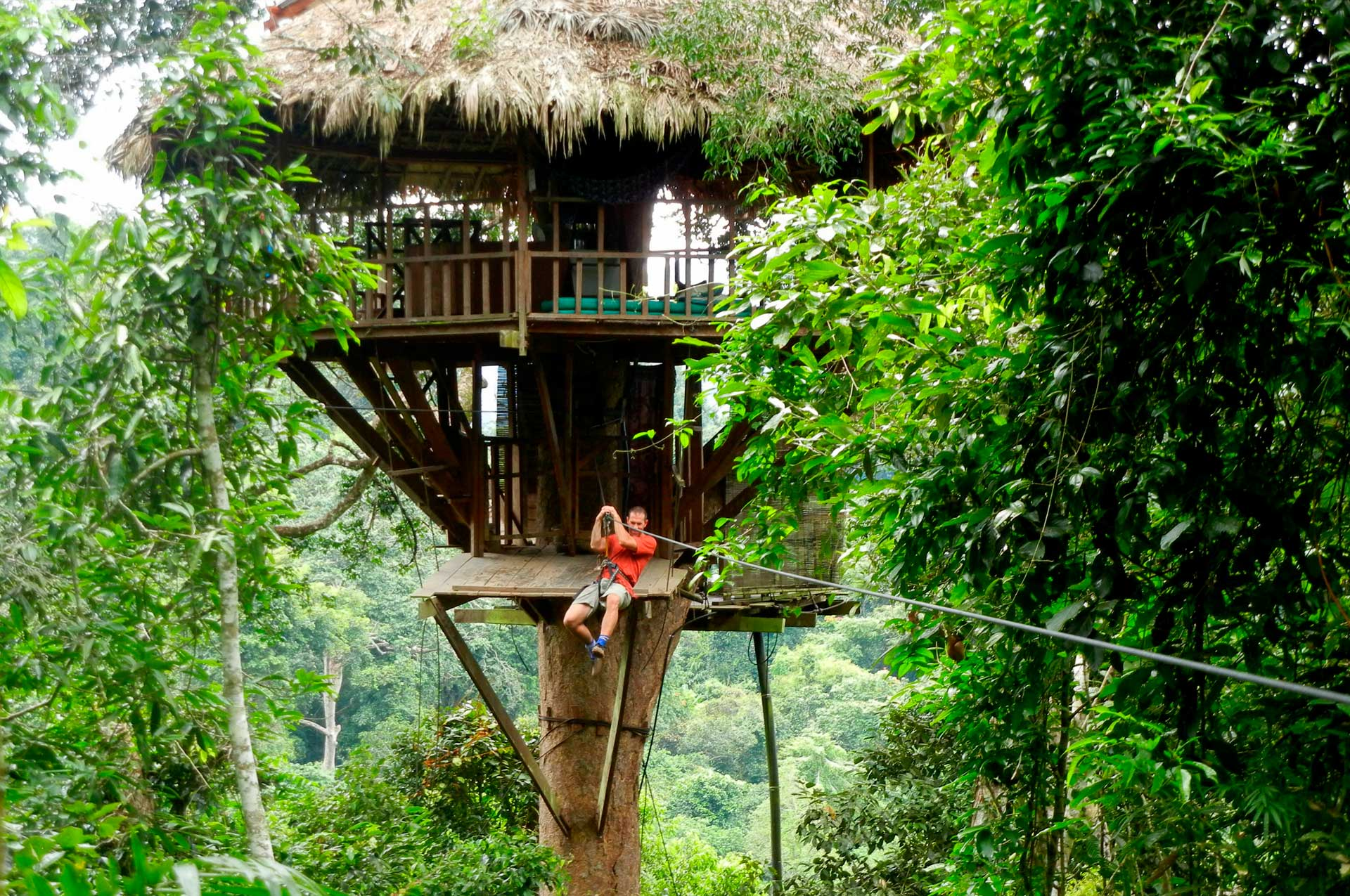 Experience to be a Gibbon laos Laos Travel