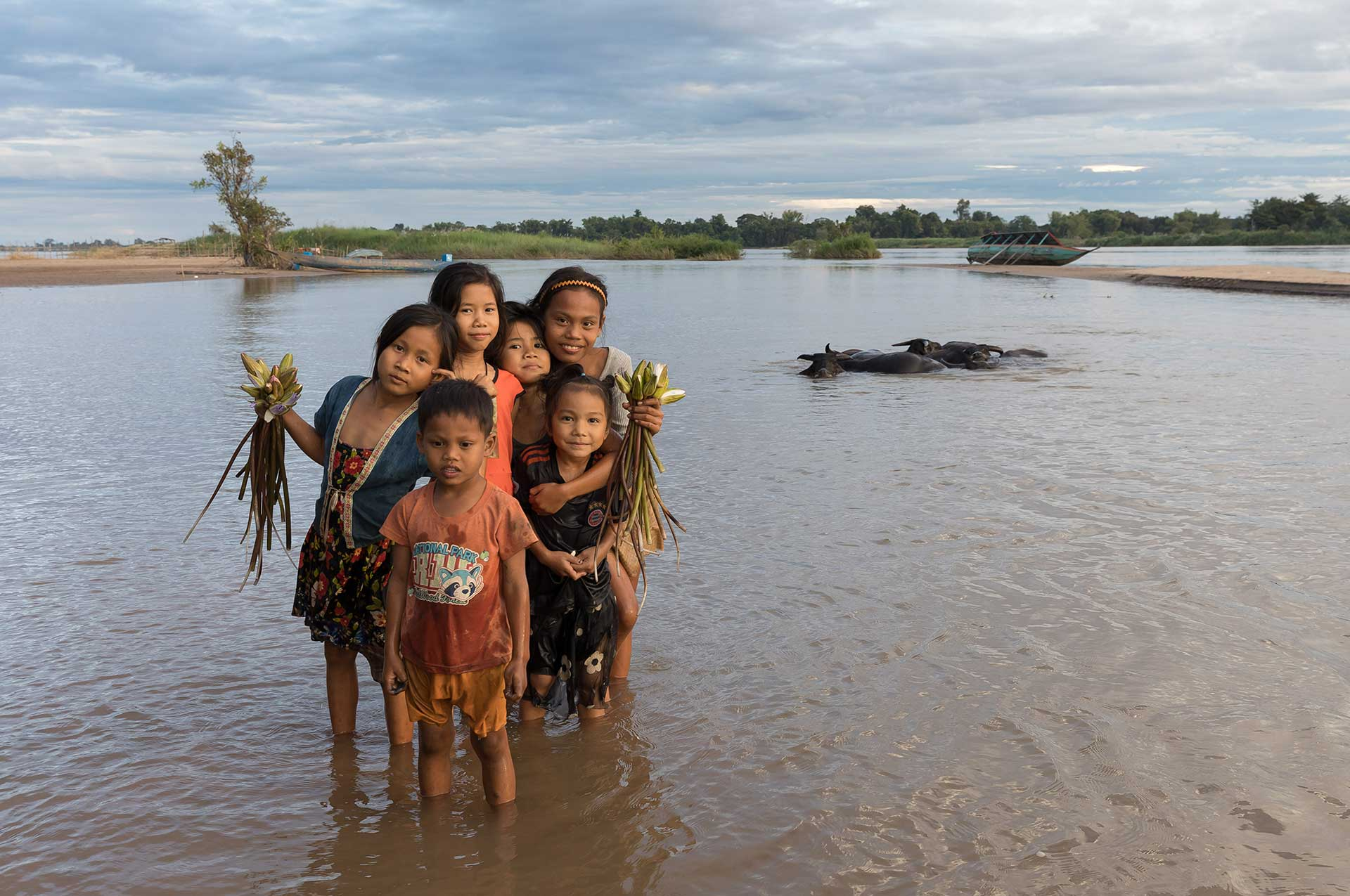 Six children in the Mekong with buffalos and boat