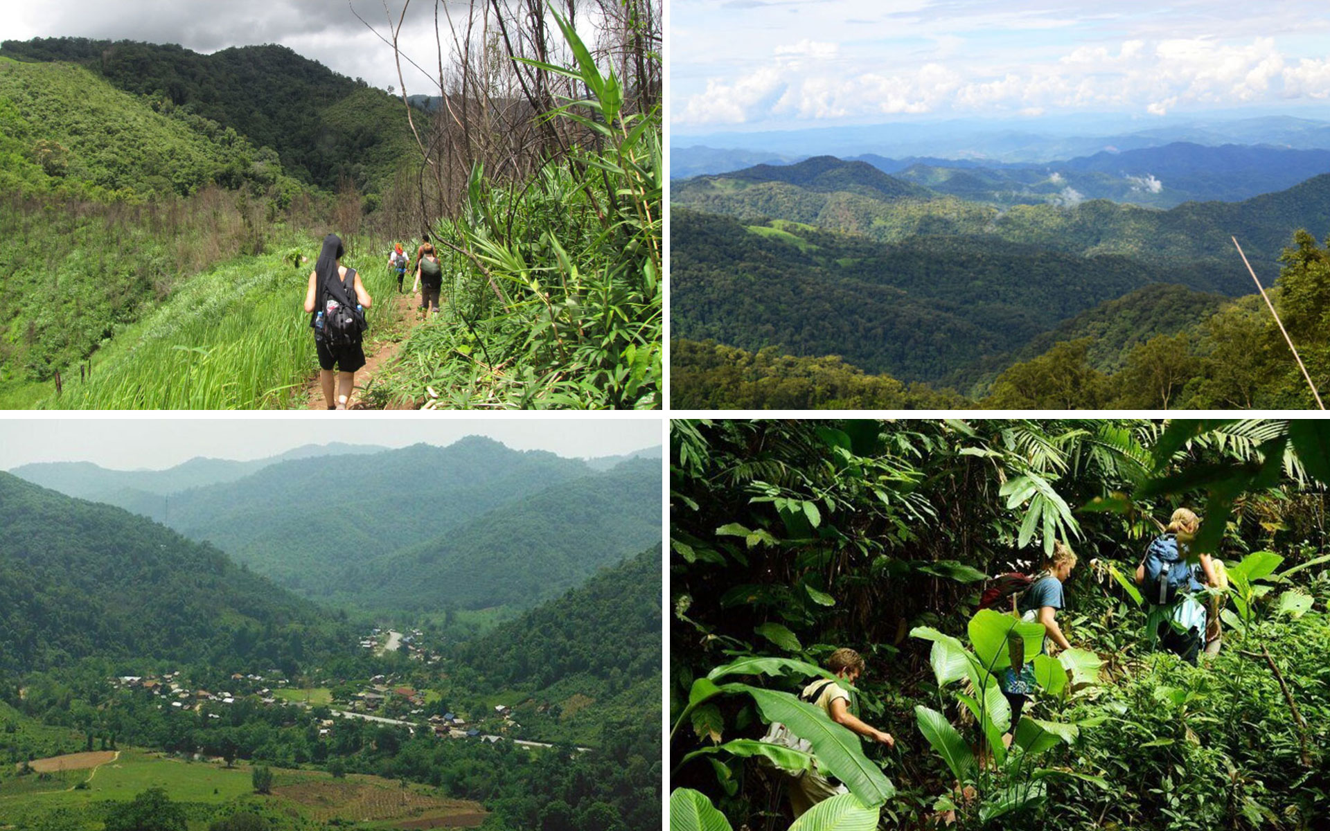 Trek at Nam Ha National Protected Area is the best thing to do in Luang Namtha