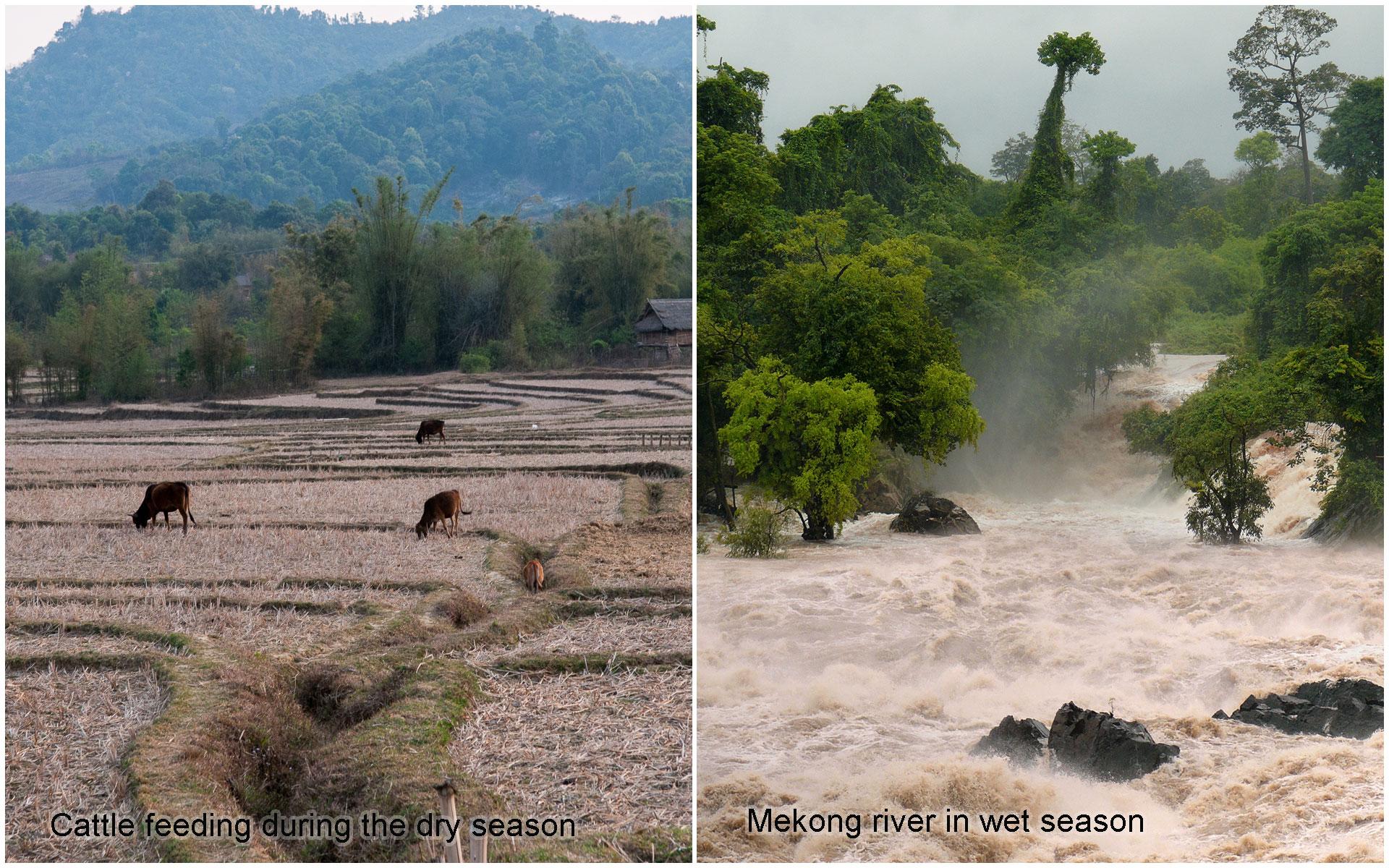 Seasons of Laos
